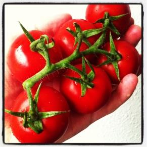 Flotte, friske tomater