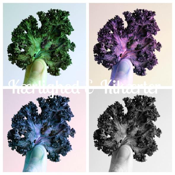 sund snack med grønkål