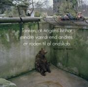 tristbjørn