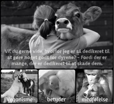 Ikke alle kan gøre noget godt for andre, men alle kan undgå at skade andre. Veganisme handler ikke nødvendigvis om at være god ved andre dyr, det handler bare om ikke at gøre skade. Det er et absolut minimum.